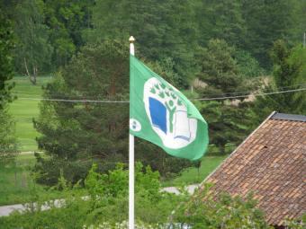 Förskolans gröna flagg